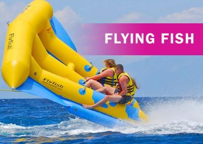 Flyingfish Ride