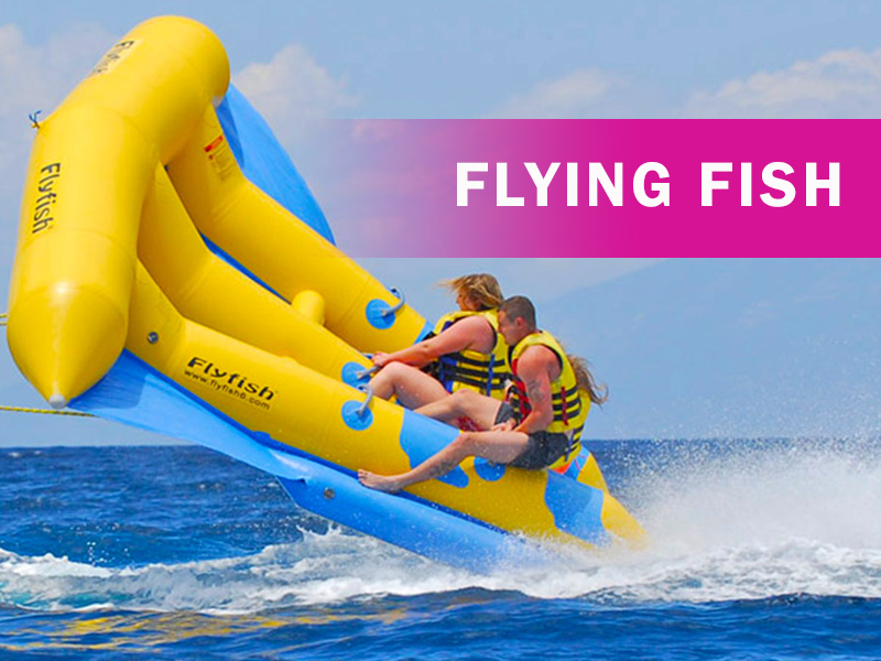 Flyingfish Ride