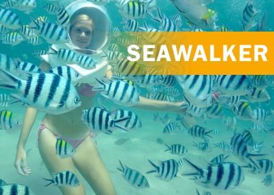 Seawalker Adventure