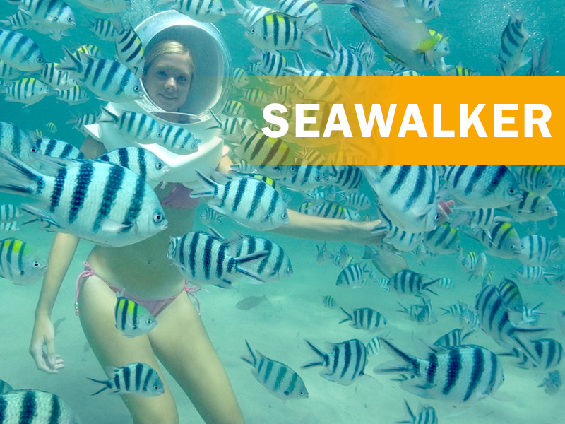 Seawalker Adventure